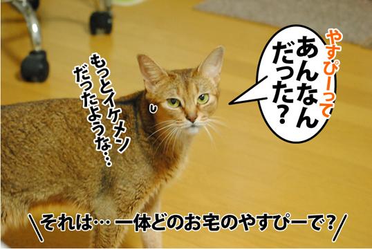 20120830_05.jpg