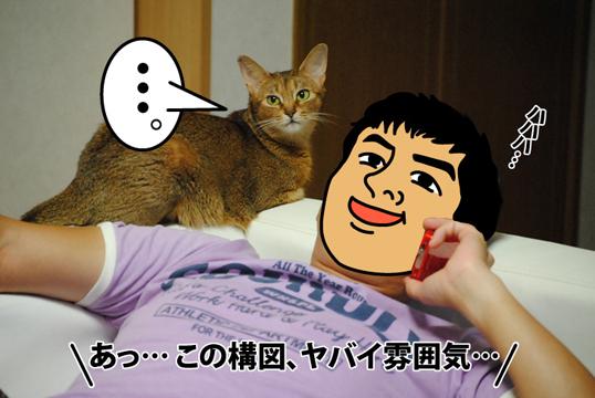 20120901_01.jpg