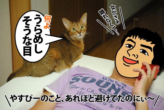 20120901_02.jpg