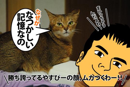 20120901_03.jpg
