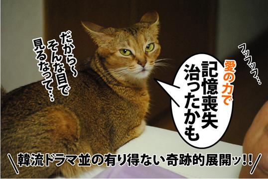 20120901_04.jpg