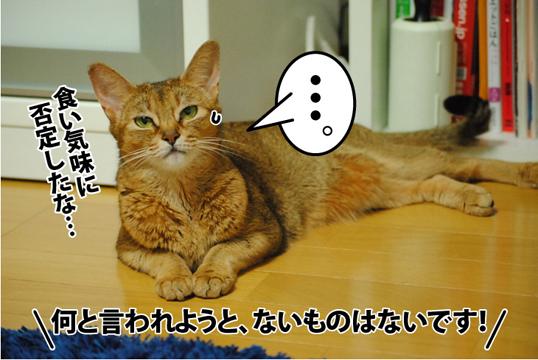 20120903_08.jpg