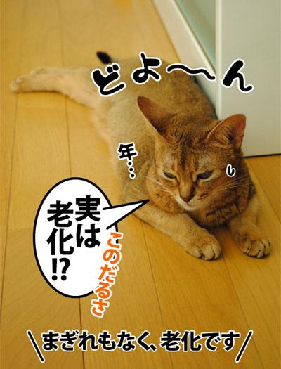 20120905_03.jpg