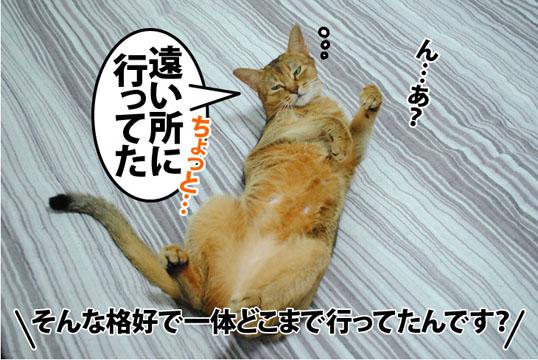 20120906_02.jpg