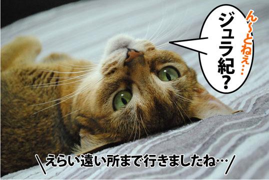 20120906_03.jpg