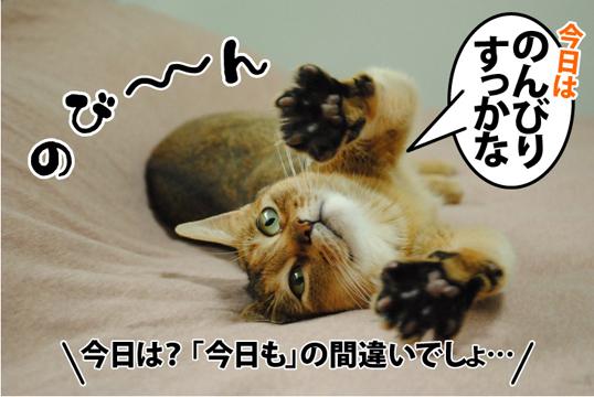 20120909_01.jpg