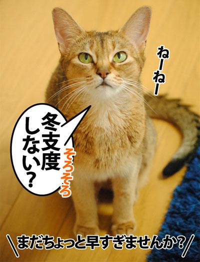 20120911_01.jpg
