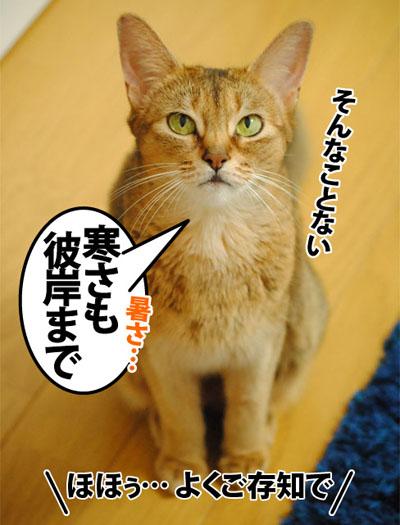 20120911_02.jpg