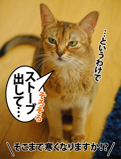20120911_03.jpg