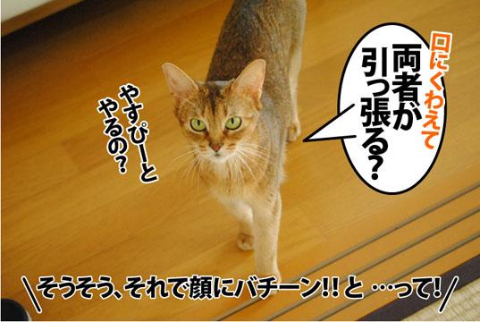 20120912_03.jpg
