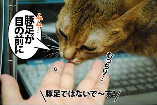 20120914_01.jpg