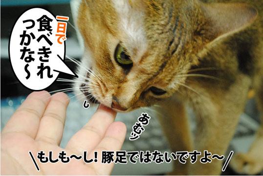 20120914_02.jpg