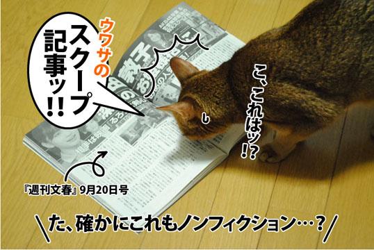 20120917_04.jpg