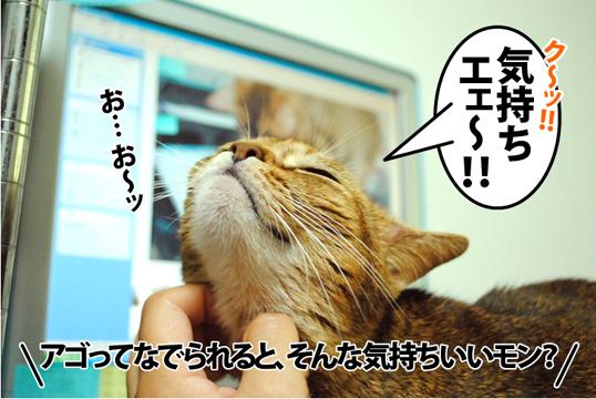 20120919_01.jpg