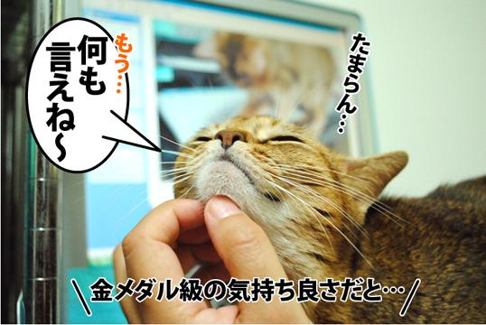20120919_02.jpg