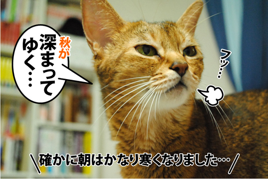 20120921_01.jpg