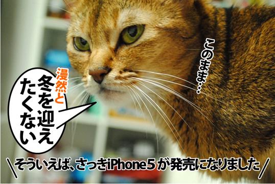 20120921_02.jpg