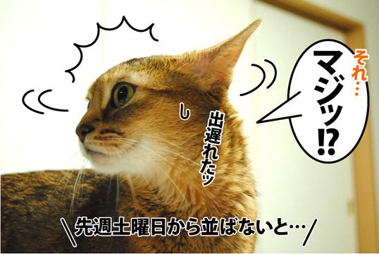 20120921_03.jpg