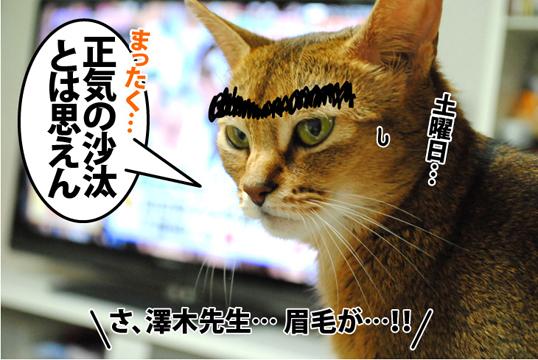20120921_04.jpg