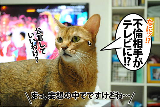 20120925_01.jpg