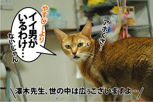 20120925_02.jpg