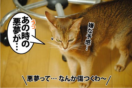 20120930_03.jpg