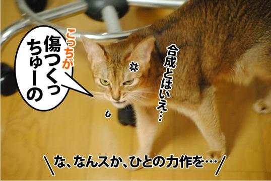 20120930_04.jpg