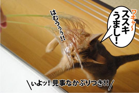 20121002_03.jpg