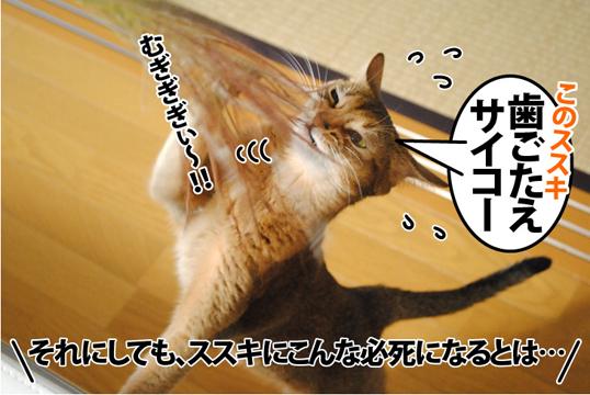 20121002_04.jpg