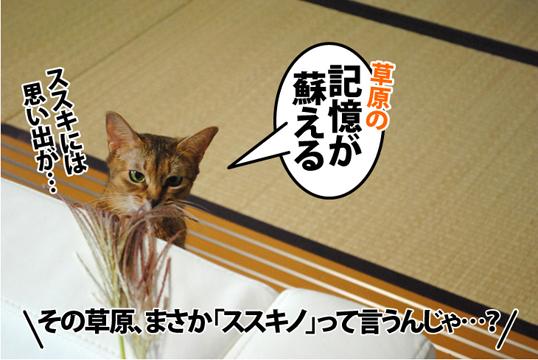20121002_05.jpg