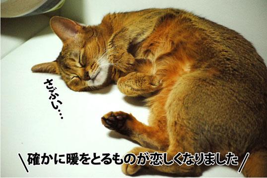 20121009_01.jpg