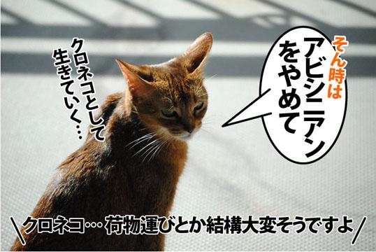 20121009_03.jpg