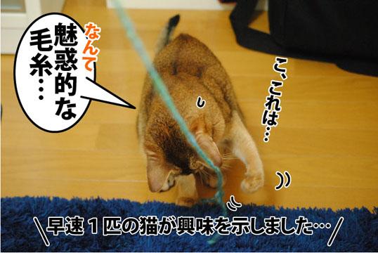 20121011_02.jpg