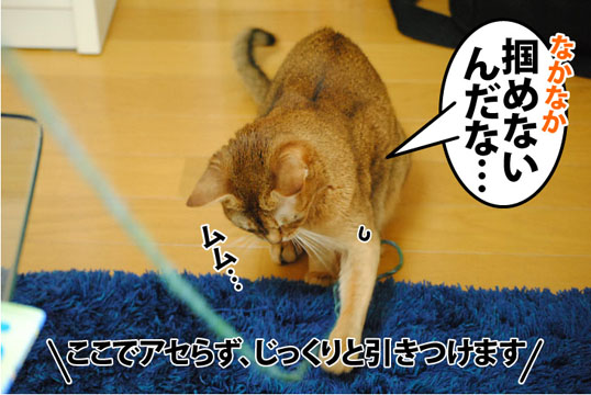 20121011_03.jpg