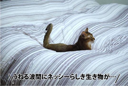 20121014_01.jpg
