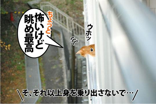 20121022_02.jpg