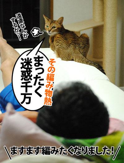 20121024_03.jpg