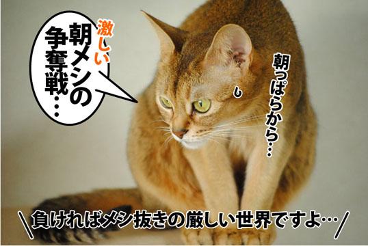 20121025_03.jpg