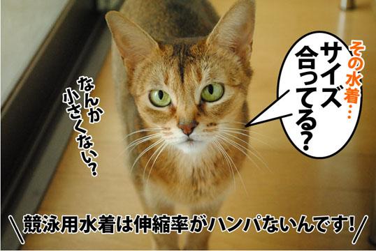 20121027_04.jpg