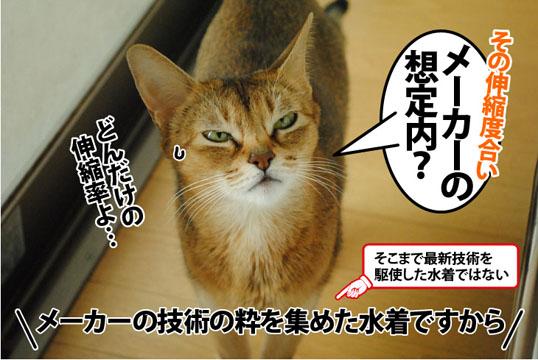 20121027_05.jpg