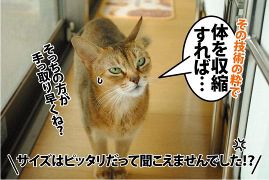 20121027_06.jpg