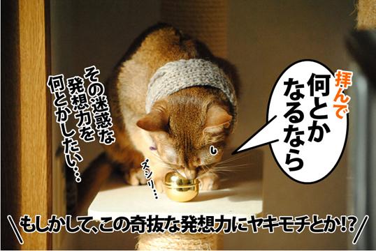 20121101_03.jpg