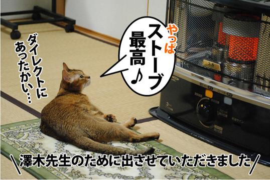 20121103_01.jpg