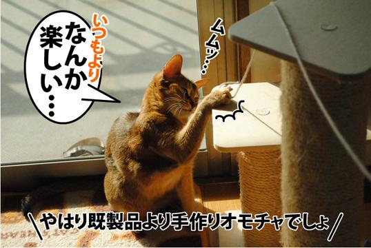 20121105_02.jpg