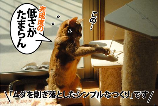 20121105_03.jpg