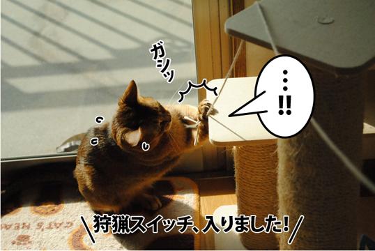 20121105_04.jpg