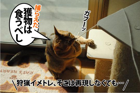 20121105_05.jpg