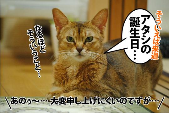 20121108_02.jpg