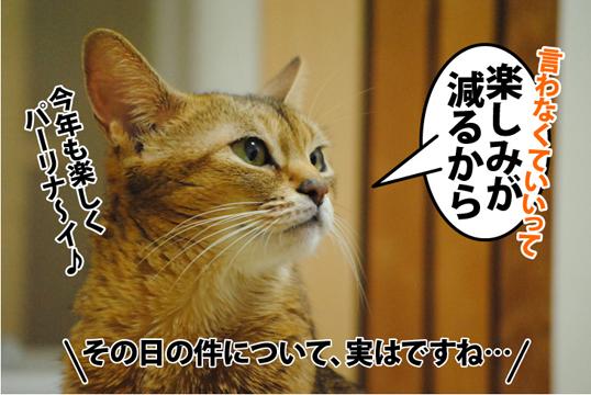 20121108_03.jpg