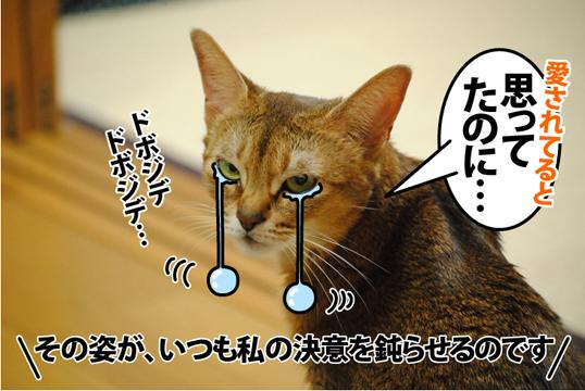 20121108_05.jpg